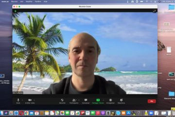 Biographie en vidéoconférence - Zoom - Skype - What's app