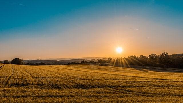 J'veux du soleil! Lever de soleil sur la campagne.